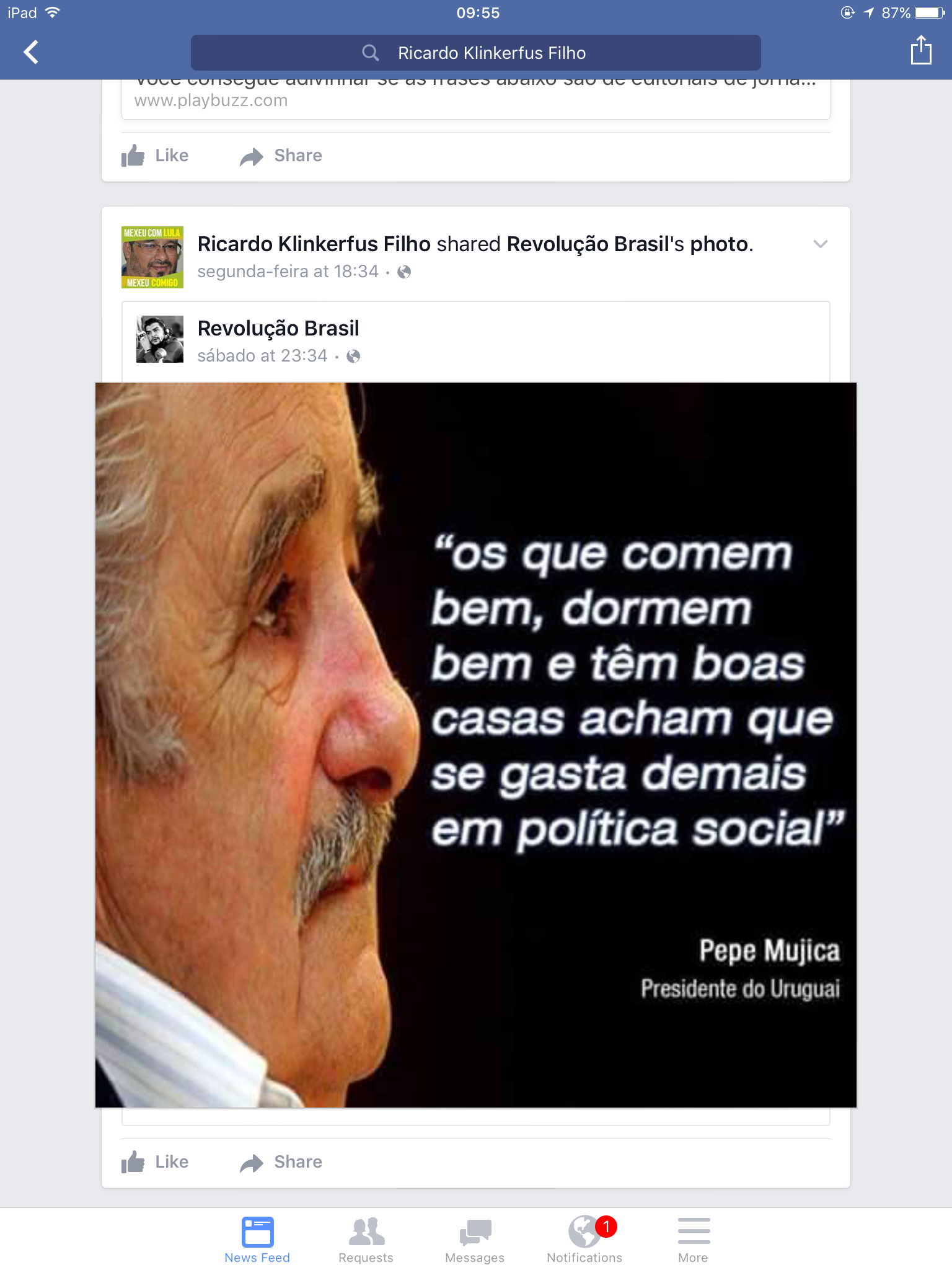 Ricardo Klinkerfus Filho__007